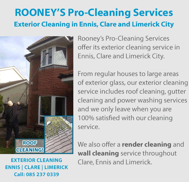 Rooney S Pro Cleaning Services Window Cleaner Roof